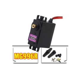 DS82  High Torque Servo digital